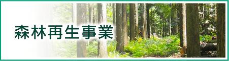 森林再生事業