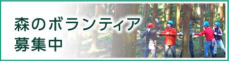 森のボランティア募集中